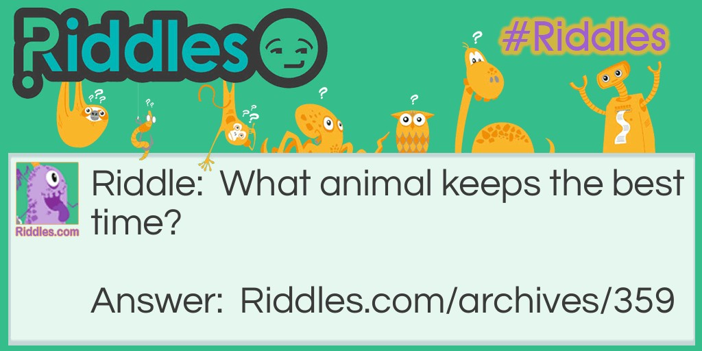 Animal Time Riddle Meme.