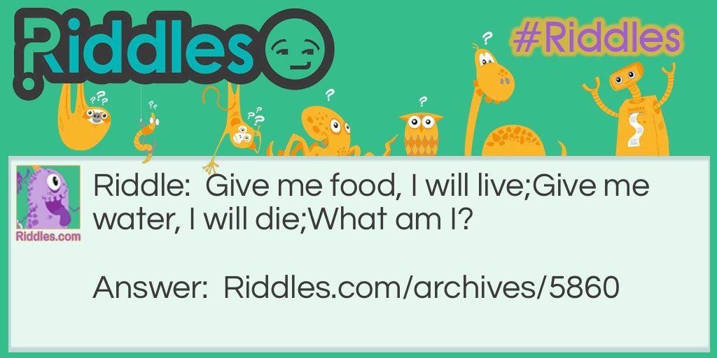 Food or Water? Riddle Meme.