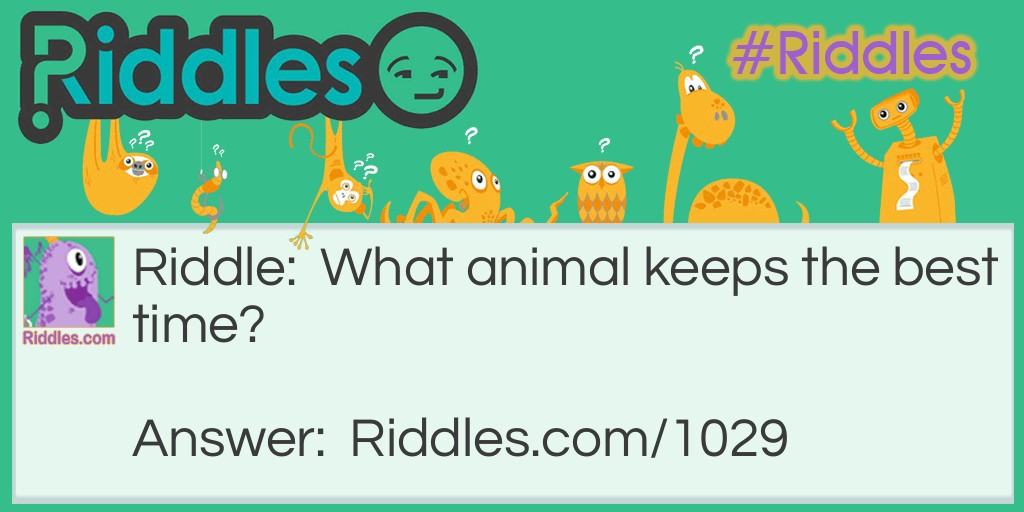 What animal keeps the best time? Riddle Meme.