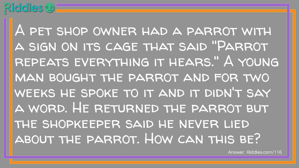 Pet Parrot Riddle Meme.