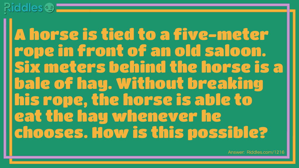 tied up horse Riddle Meme.