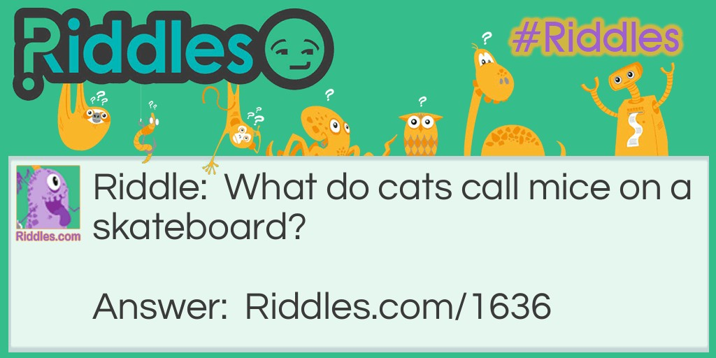 Cat Food Riddle Meme.
