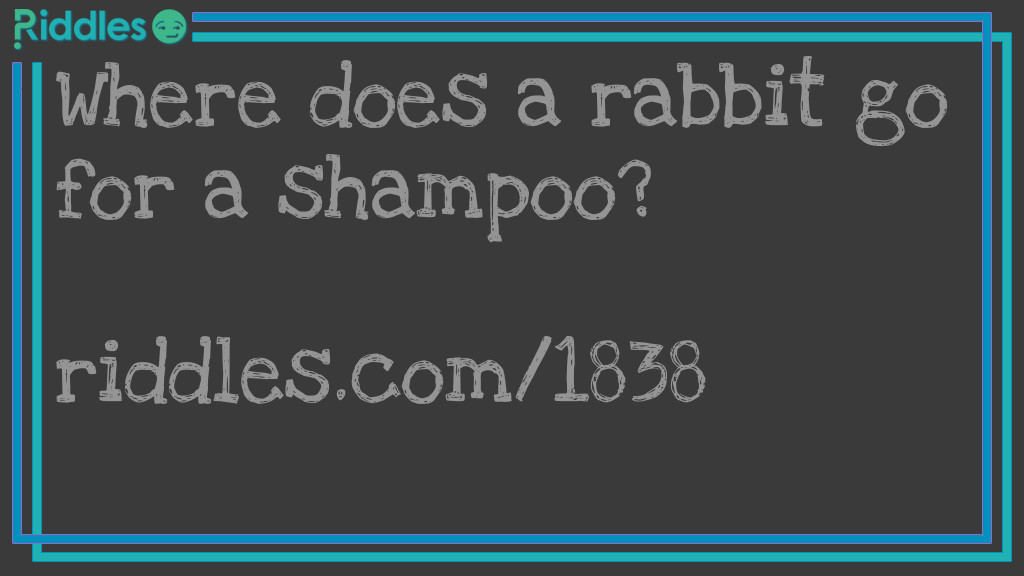 Dirty Rabbit Riddle Meme.