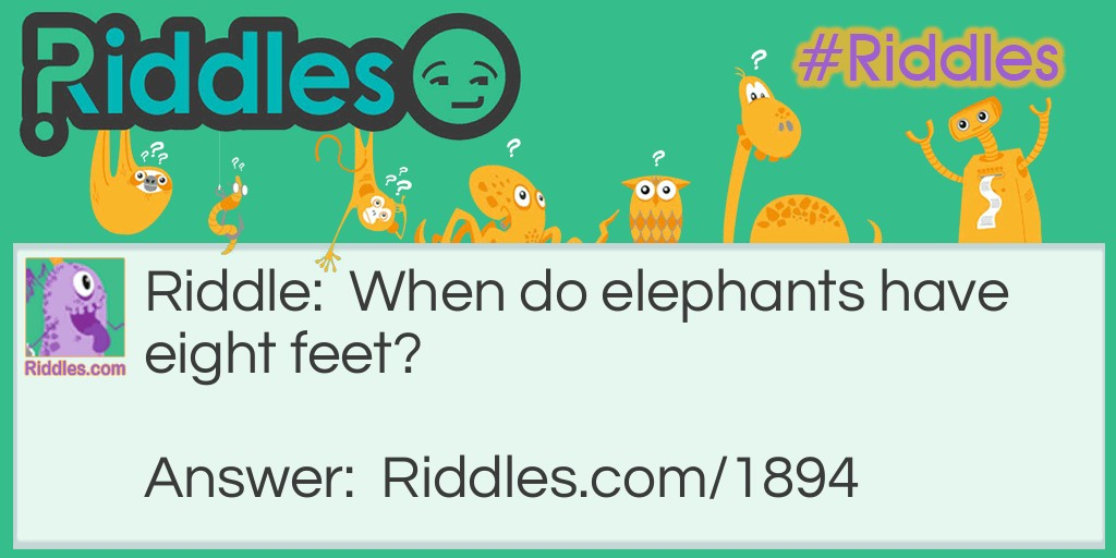 Eight Footed Elephants Riddle Meme.
