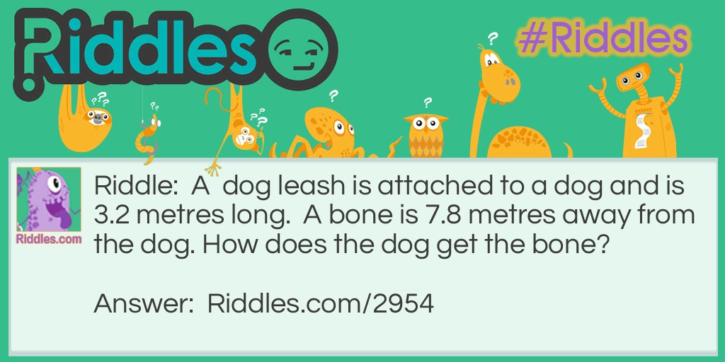 Dog Leash Riddle Meme.