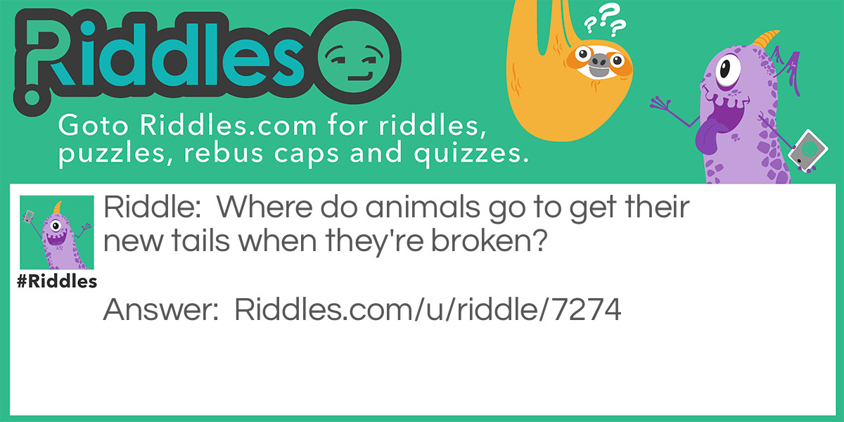 Broken tails Riddle Meme.